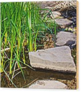 Stepping Stones Across Creek On Lower Palm Canyon Trail In Indian Canyons Near Palm Springs-ca Wood Print