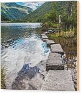 Stepping Stones Wood Print