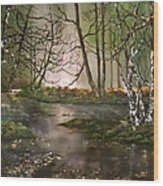 Stepping Stones On Cannock Chase Wood Print