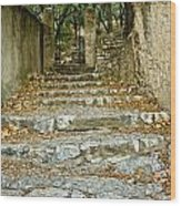 Steps In Cavaillon Wood Print