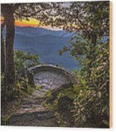 Steps To A View Wood Print