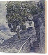 Steps To Beauty On Moro Rock Wood Print