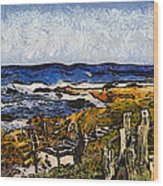 Steps To The Sea Abstract Wood Print by Barbara Snyder