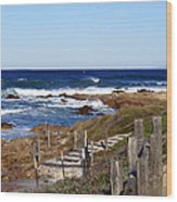 Steps To The Sea Wood Print