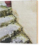 Steps Wall And Vase Wood Print
