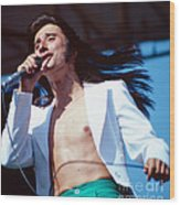 Steve Perry Of Journey At Day On The Green Wood Print