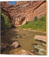 Stevens Arch - Escalante River - Utah Wood Print