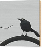 Stick-grackle And Bar Thats All Wood Print
