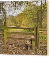 Stile In Plessey Woods Wood Print