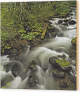 Still Creek Mt Hoodoregon Wood Print