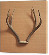 Still Life Of Deer Antlers On A Fabric Wood Print