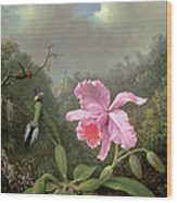 Still Life With An Orchid And A Pair Of Hummingbirds Wood Print by Martin Johnson Heade