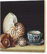 Still Life With Nautilus Wood Print