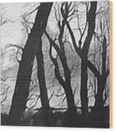 Still Of The Night Wood Print