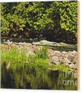 Still Pool And Fast River Wood Print