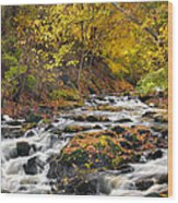 Still River Rapids Wood Print