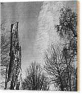Still Standing After The Storm Wood Print