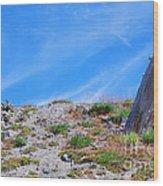 Still Standing. Near Mount St. Helens 2012 Wood Print