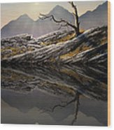 Still Standing Reflections Wood Print
