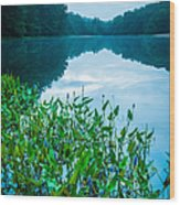 Stillness On Schreeder Pond Wood Print
