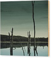 Stillness Wood Print