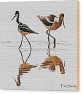 Stilt And Avocet Share The Pond Wood Print