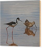 Stilt And Dowitcher  Wood Print