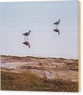 Stilt Birds Wood Print