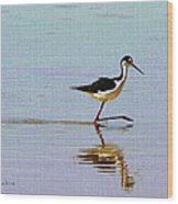 Stilt Out For A Stroll Wood Print