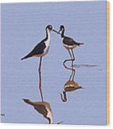 Stilts In The Blue Wood Print