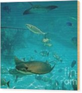 Stingray And Fish Wood Print