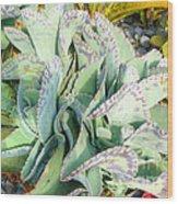 Stippled Cactus Wood Print