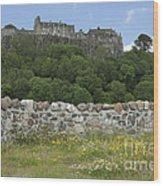 Stirling Castle Scotland Wood Print
