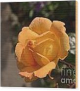 Stirling Rose Wood Print