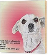Stitch - A Shelter Sweetie Wood Print