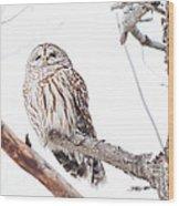 Stoic Wood Print