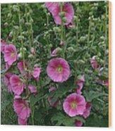 Stokrose Pink Wood Print