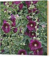 Stokrose Purple Wood Print