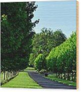 Stoller Drive 24004 Wood Print