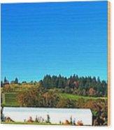 Stoller Storage Driveway 19828 Wood Print