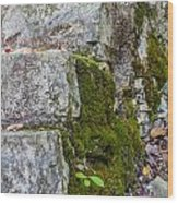 Stone And Moss Wood Print