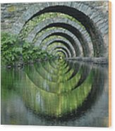 Stone Arch Bridge Over Troubled Waters - 1st Place Winner Faa Optical Illusions 2-26-2012 Wood Print