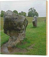 Stone At Avebury Wood Print