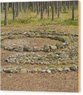 Stone Circle Wood Print