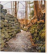 Stone Cold Walkway Wood Print by Jim Lepard