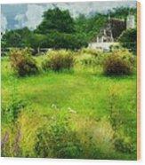 Stone Crop Garden Wood Print