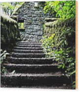 Stone House Stairs Wood Print by Lizbeth Bostrom