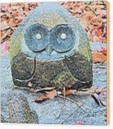 Stone Owl Wood Print