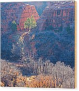 Stone Quarry At Red Rocks Open Space Wood Print