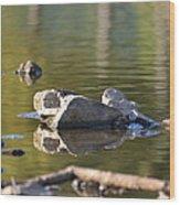 Stone Reflections Wood Print
